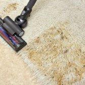 Як почистити ковролін