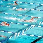 Як правильно плавати кролем