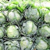 Як збирати урожай капусти