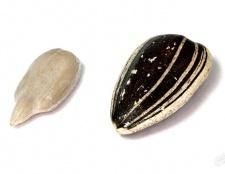 Як посмажити насіння в мікрохвильовці