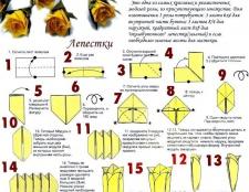 Як зробити орігамі квіти