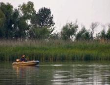 Куди поїхати на рибалку в ростовської області