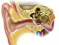 Чому закладає вуха